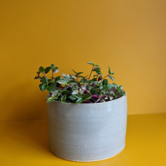 beautiful handmade ceramic plant pots independently made in Bath